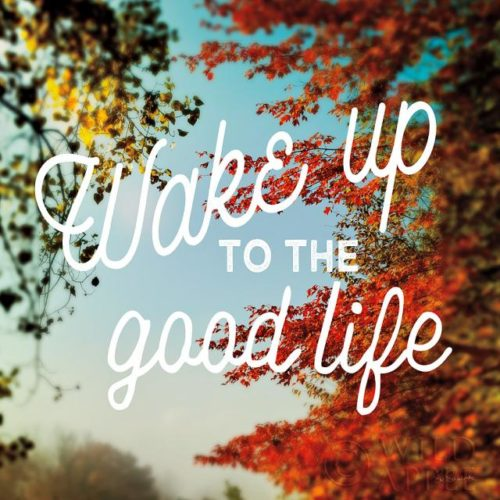 Wake Up to the Good Life by Sue Schlabach