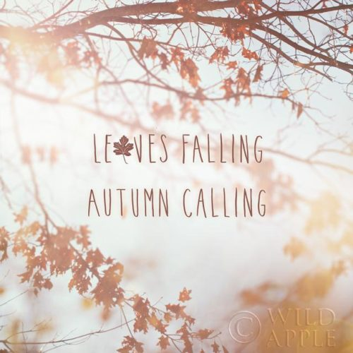 Autumn Calling I by Laura Marshall