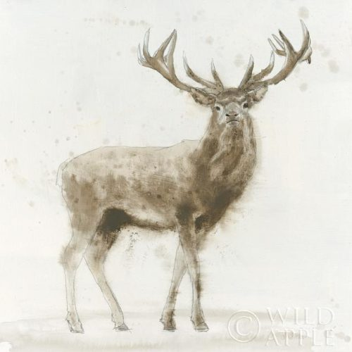 Stag v.2 by James Wiens
