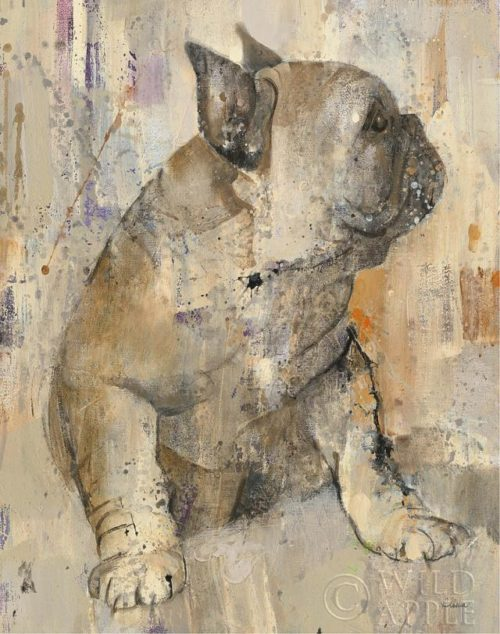 Duke by Albena Hristova