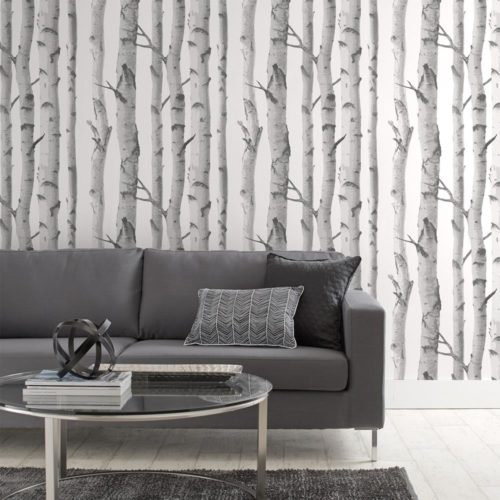 Birch Trees Wallpaper from Boucliar Home