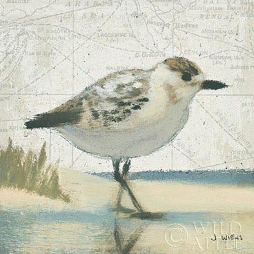 Beach Bird I by James Wiens